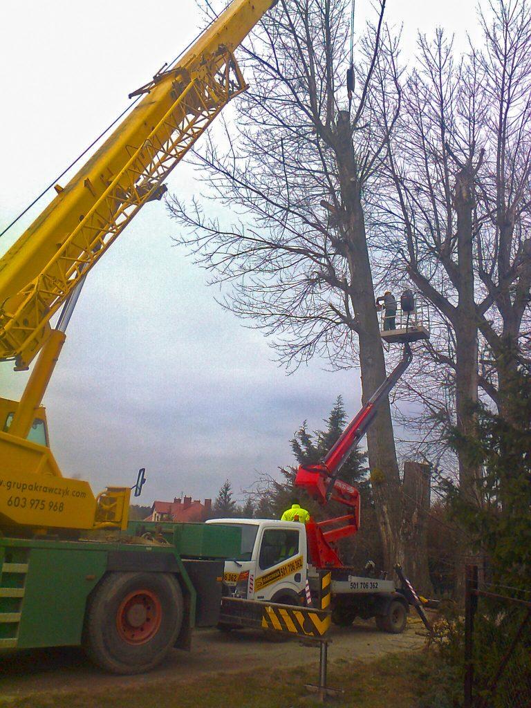 Ścinanie gałęzi